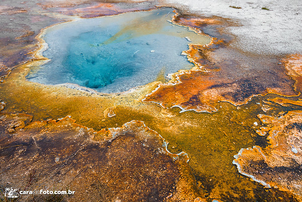 As Cores Do Yellowstone Park