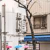 Procissão Japonesa