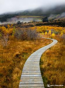 Caminho Para… onde?
