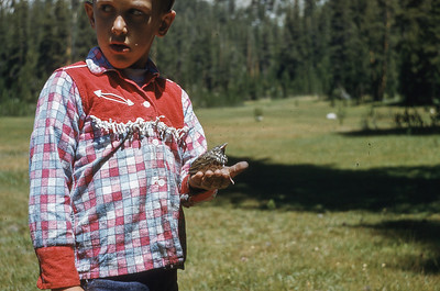Boy With Dead Bird, 1963