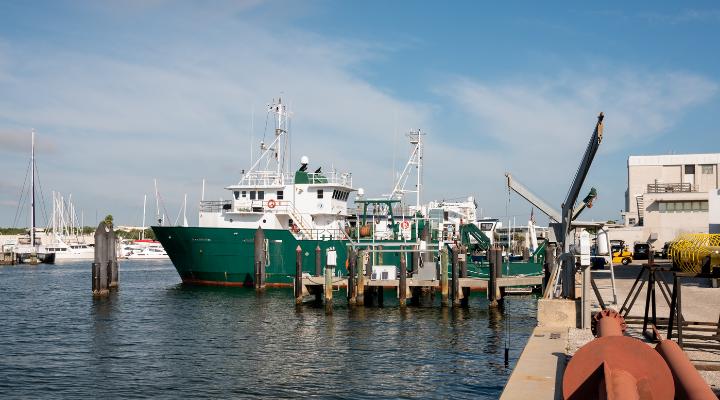 Leaders in Care: Port Tampa Bay SHIPP Program