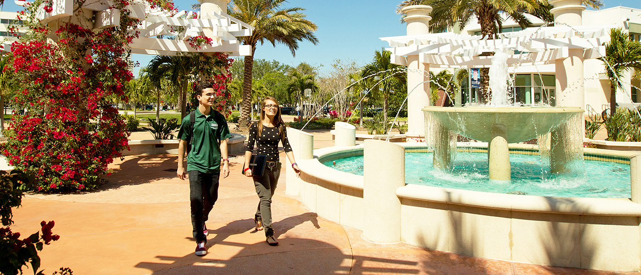 USF: University of South Florida Foundation