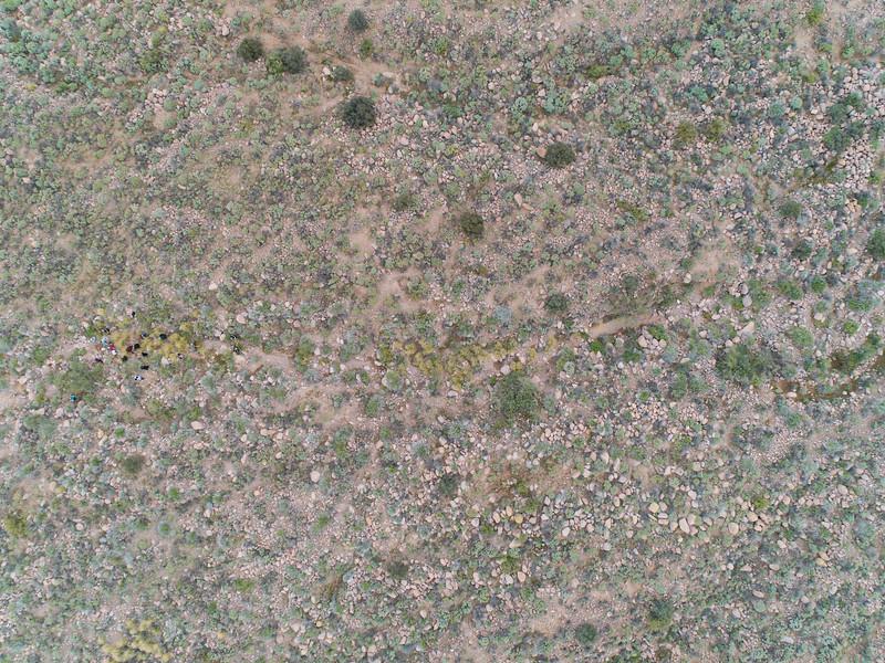AZ State Parks Family Campout - Lost Dutchman - 11/30-12/2/18