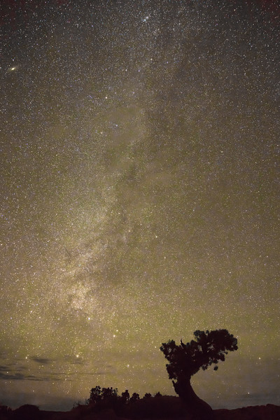 Dead Horse Point Milky Way
