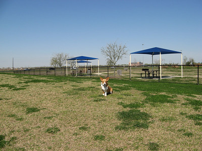 03-03-07 Pearland Dog Park_17