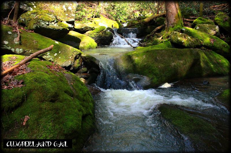 Four Mile Creek Falls