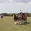 Lakewood Ranch Polo Field, before the match.  March 1, 2015