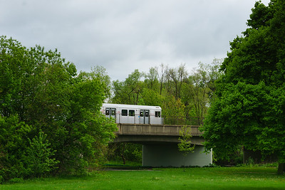 Subway Train Passing Through Tom Riley Park
