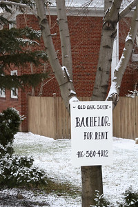 Bachelor for Rent