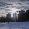 Winter Sun, Tom Riley Park