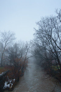 A Foggy Morning on Mimico Creek