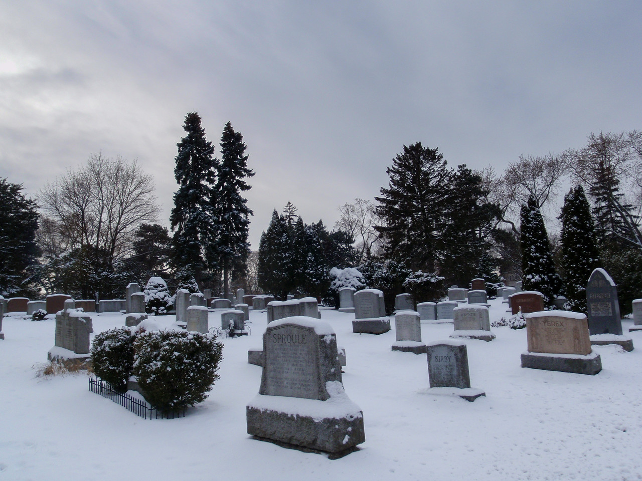 Winter Graveyard