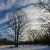 Winter Cloudscape In Tom RIley Park