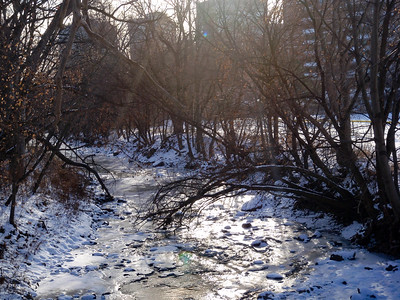 Mimico Creek In WInter