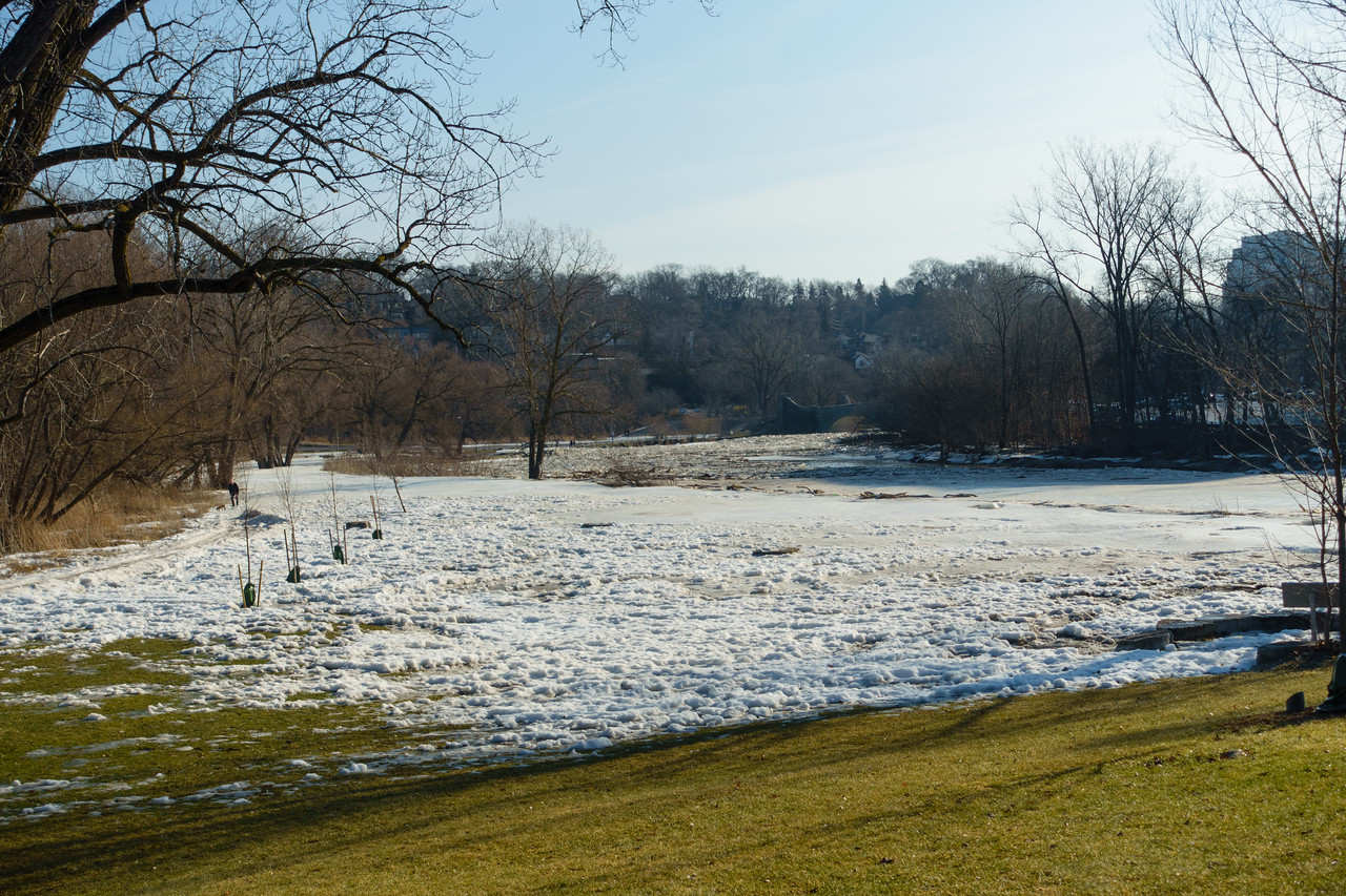 Humber River Ice Field