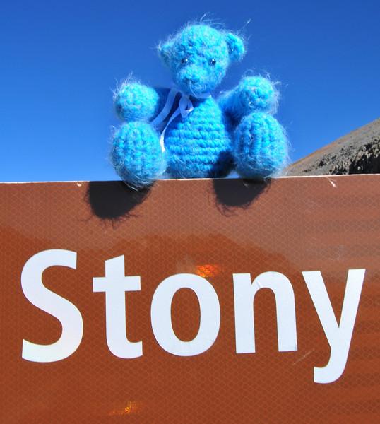 Stony Bear