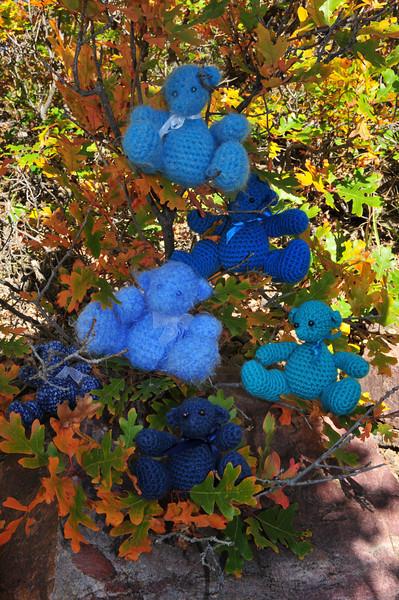 Autumn Fun on the Bear Creek National Trail