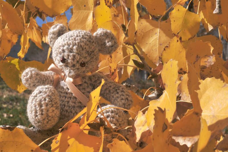 Autumn Bear