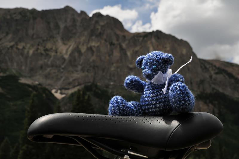 Winnie the 14er Bear below Mount Gothic