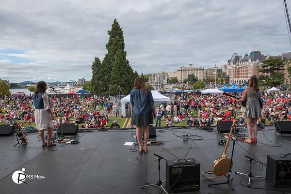 Foxglove | Victoria Legislature Grounds | Victoria BC