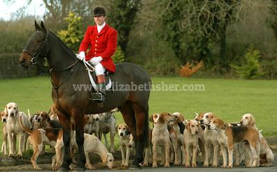 Irish Shooting & Hunting