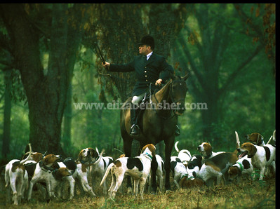 The Tryon Hounds