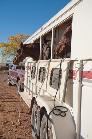 0011 - 2012 Caza Ladron Hounds Canyon de Chelly Weekend