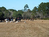 0100 - 2013 Plantation Hunt Weekend