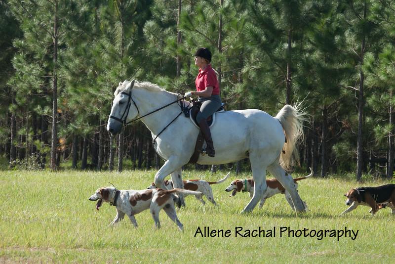 20161015 foxhunting-9003