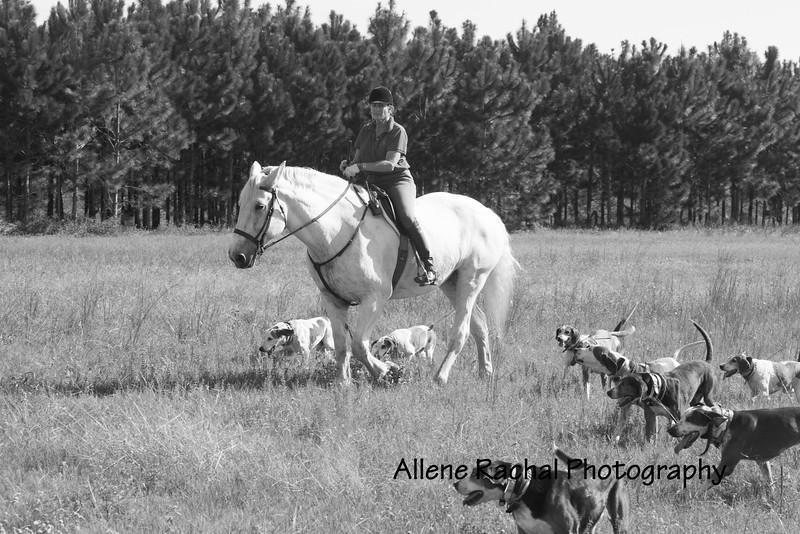20161015 foxhunting-9050
