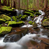 Quiet Tributaries<br /> Sol Duc Falls Tributaries<br /> Olympic National Park<br /> <br /> The theme of this trip for me was 'water.' In two days I must have hiked twenty miles and driven 300. The rain never stopped which made it muddy, and slippery, and fun! <br /> Immediately after taking this series of shots I turned to hike down the rocks with my camera and tripod on my shoulder when the slippery moss got the better of me. <br /> In a successful effort to save the camera, I sacrificed my rear-end. <br /> The bruise the size of a grapefruit made the 6 hour drive back to Seattle a little uncomfortable, but the photos were worth it.