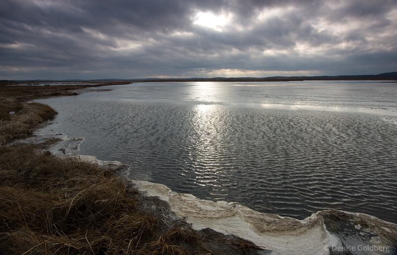 Early winter light at Parker River National Wildlife Refuge, Plum Island, Massachusetts