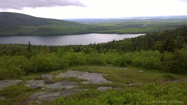 from Cadillac Mountain, Acadia National Park