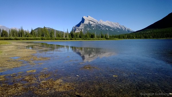 Mount Rundle from the Vermillion Lakes