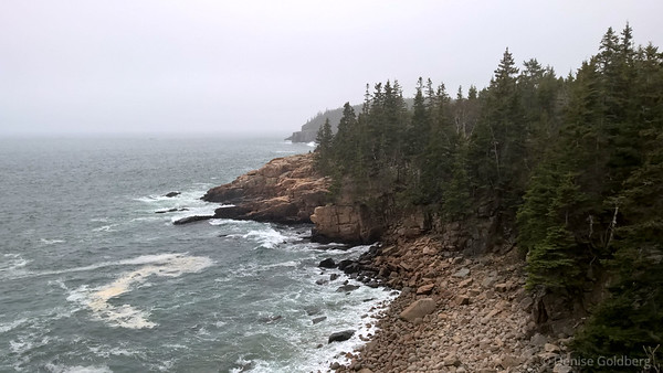along Park Loop Road, fog, rocks, ocean waves