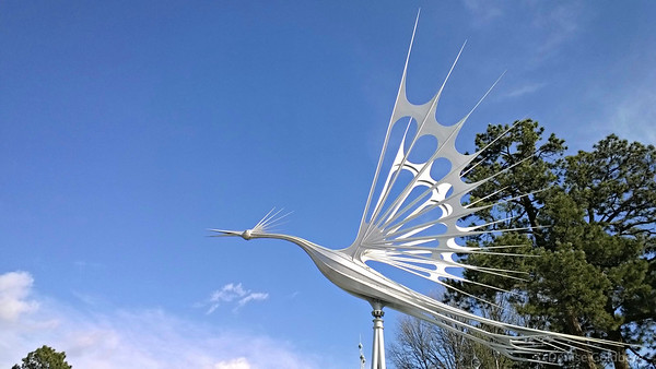 bird in flight, a sculpture by Starr Kempf, Colorado Springs
