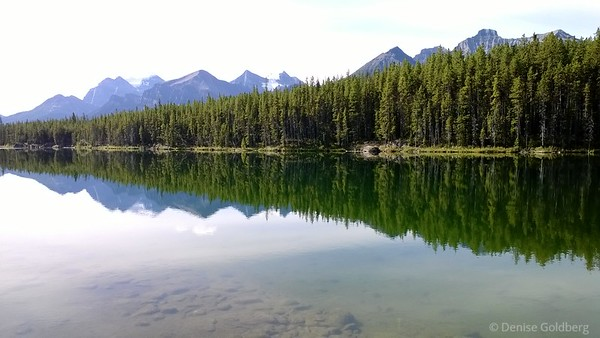 reflections in Hebert Lake, along Icefields Parkway, Alberta