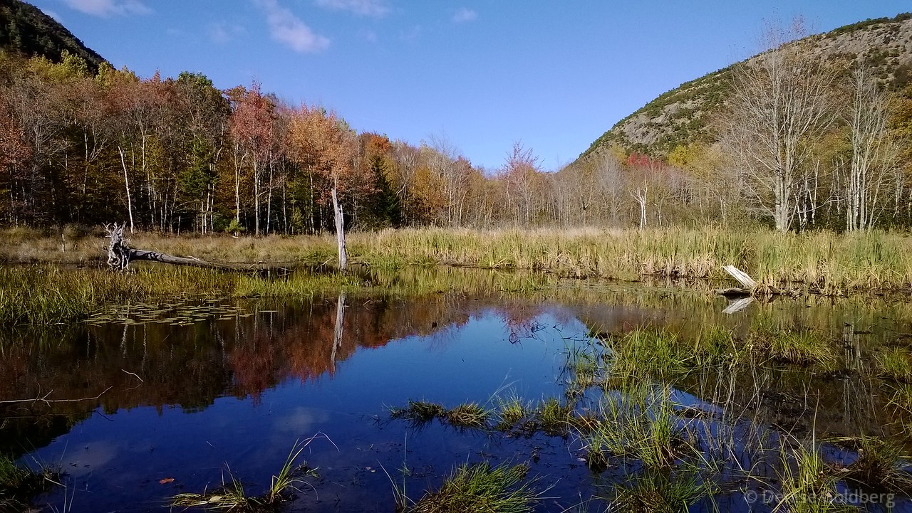 reflections in little Tarn Lake, Acadia National Park