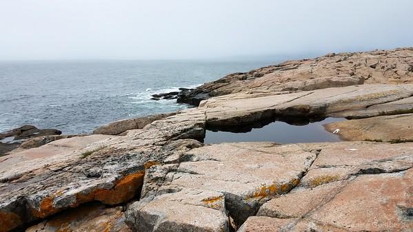 on the Schoodic Peninsula, Acadia National Park