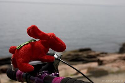 riding along the coast
