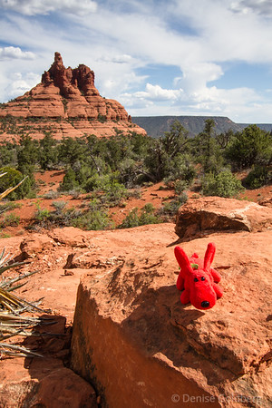 Rover perched in front of Bell Rock, Sedona