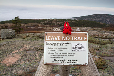 "Rover noting that he agrees with the ""LEAVE NO TRACE"" sign on the summit of Cadillac Mountain"