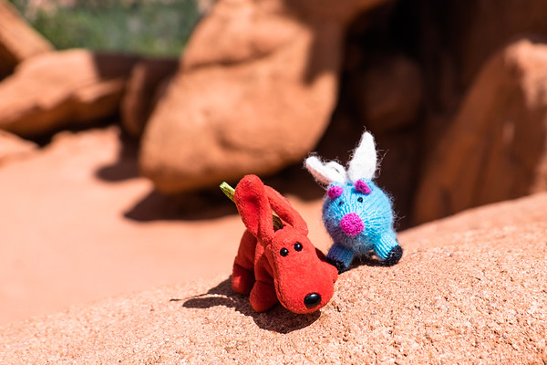 Rover and Blue standing on the very red rocks in Garden of the Gods, Colorado Springs