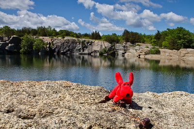 on the edge of the quarry at Halibut Point