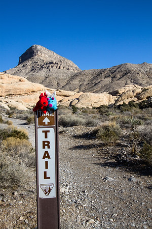Rover and Blue, on a trail sign in Red Rock Canyon