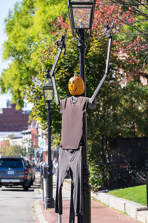 a sign of Halloween, street decorations in Portsmouth, NH