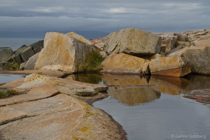 painted rocks, Schoodic Peninsula, Acadia National Park