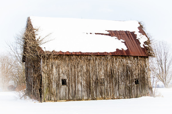 Barn with Snow and Icicles in Southern IL Winter