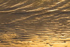 Golden Ripples in the Sand