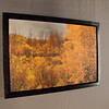 Canvas with Black Floating Frame